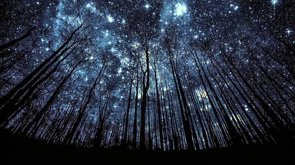 StardustStarryNightSkyFullofStars_ReclaimingEden